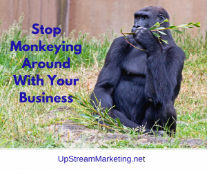Stop Monkeying Around with Your Business