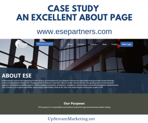 Case Study - Excellent About Page